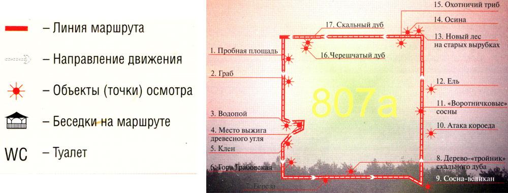 у него единственный адрес - Беловежская пуща.  Точки осмотра: 1. Пробная площадь 2. Граб 3. Водопой 4...